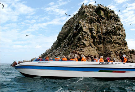 The Ballestas Islands boat tour