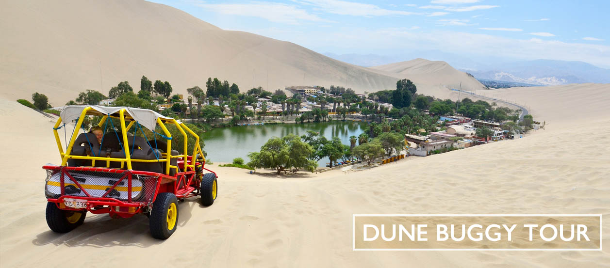 A Dune buggy and sandboarding tour