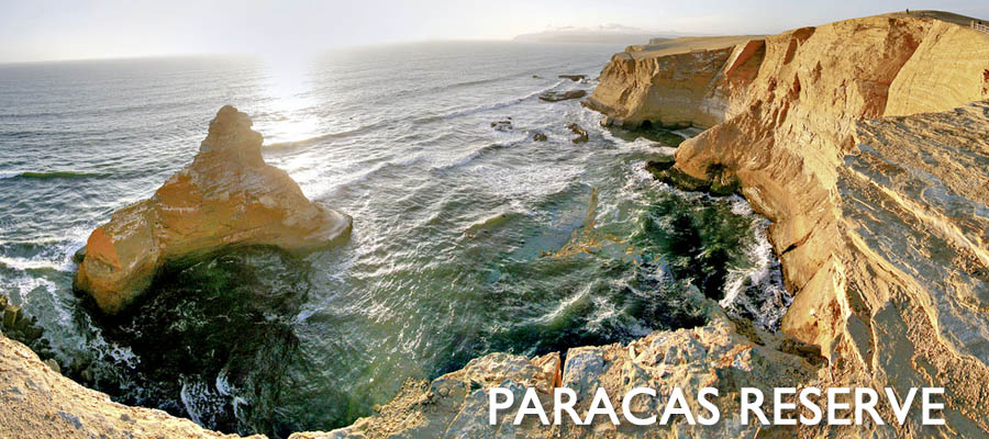 The Paracas National Reserve